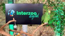 Международная выставка Interzoo в онлайне