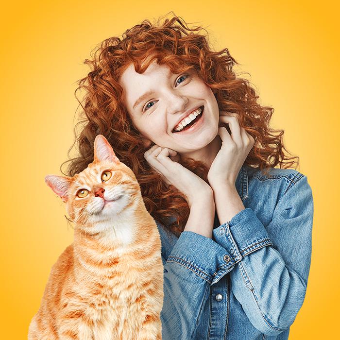 Molina лакомства для кошек