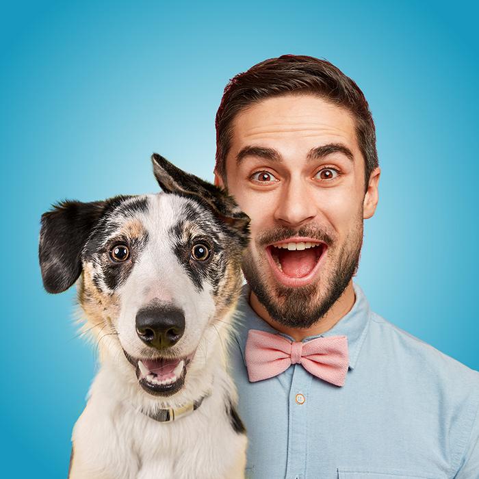 Molina лакомства для собак