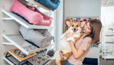 В Твери растёт интерес к товарам для собак