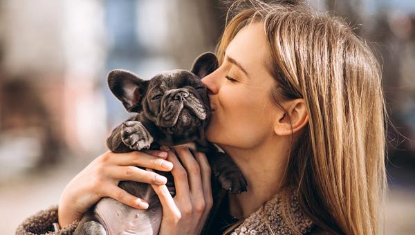 26 августа отмечается День собак