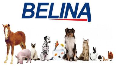 Колумбийский холдинг Grupo Nutresa S.A., производящий пищевую продукцию, приобретает производителя кормов для домашних животных и аквакультур Belina из Коста-Рики