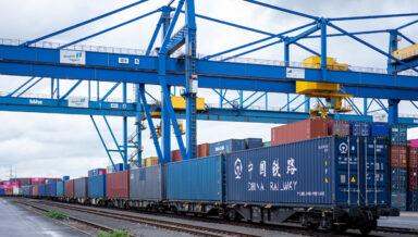 Fressnapf организовал доставку товаров поездом из Китая вместо морских грузоперевозок
