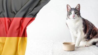 Рооссельхознадзор запретил ввоз кормов для собак и кошек из Германии