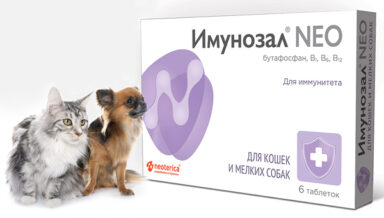 Начались продажи новой добавки от «Экопрома»