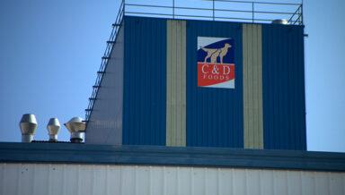 Производитель гибкой упаковки ProAmpac из Цинциннати, США, и ирландская компания C&D Foods, специализирующаяся на кормах для домашних животных, объявили о партнёрстве
