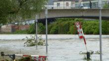 Всё больше немецких компаний присоединяется к кампании по оказанию помощи людям, предприятиям и зоозащитным организациям, пострадавшим от наводнения в Германии