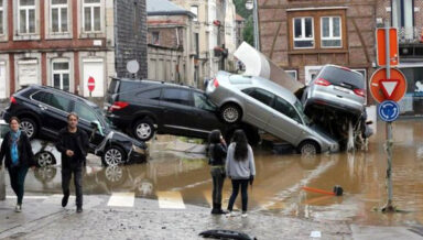 В Германии от наводнения страдают предприятия зообизнеса