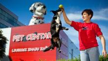 Интернет-зоомагазин и сеть Pet Network меняют владельца