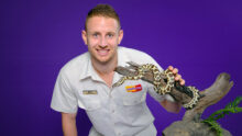 Австралийский зоомагазин Kellyville Pets запустил образовательную программу