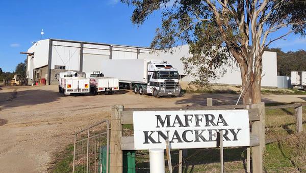 В Австралии собачники призвали власти контролировать производство кормов