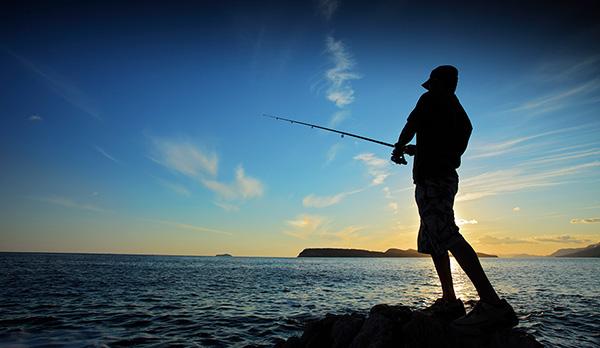 РСН обнаружил ГМО в приманке для рыбы компании Marcel Van Den Eynde