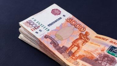 При оптовой закупке зоотоваров самарца обманули на 400 тысяч рублей