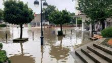 Зообизнес оценивает масштабные потери от наводнения в Германии