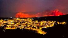 Royal Canin окажет помощь жертвам пожаров на острове Сардиния