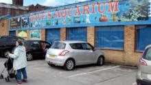 Аквариумный магазин Daves Aquarium в Англии лишился лицензии