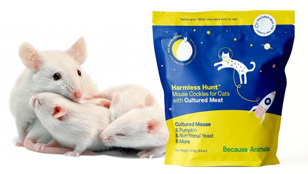Because Animals представила лакомство для кошек из мышатины