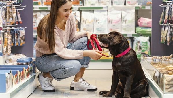Собаки и кошки в США: Packaged Facts сосчитал домашних питомцев