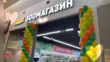 В Москве начал работать новый зоомагазин «Динозаврик»