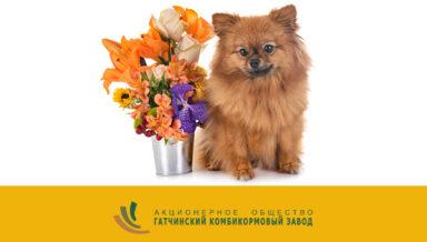 «ГАТЧИНСКИЙ ККЗ» отмечает 15-летие производства кормов для собак и кошек