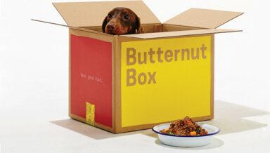 Производитель кормов для собак Butternut Box получил £40 млн инвестиций