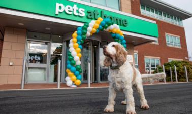 Сеть зоомагазинов Pets at Home представила данные о продажах в I квартале