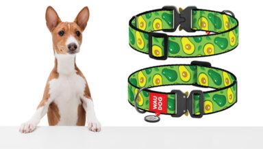 Collar представил ошейники специально для крупных собак