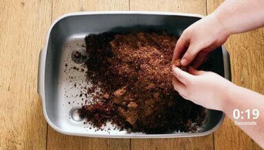 В Великобритании разработали наполнитель для туалета из кокосовой шелухи