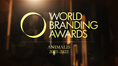 Объявлены победители конкурса «Бренд года» - Animalis World Branding Awards 2021