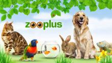 Hellman & Friedman поднимает ставки в соревновании за интернет-зоомагазин Zooplus