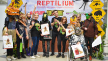 Очередная выставка «Рептилиум» прошла в начале октября