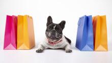 Собаки обходятся россиянам дороже, чем кошки, – выяснили «Самокат» и AliExpress