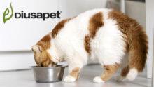 Diusa Pet предлагает новый формат упаковок кормов для собак и кошек