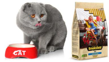 Компания Brooksfield расширяет ассортимент кормов для кошек