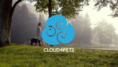 В Германии приложение для животных Cloud4pets назвали лучшим стартапом года