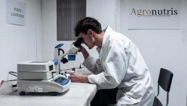 Agronutris получил €100 млн на производство белковых продуктов из насекомых