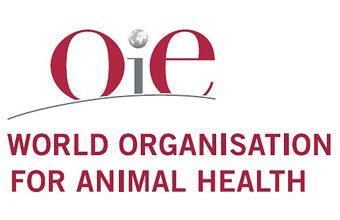 Опубликованы данные МЭБ об опасных заболеваниях животных за июль 2021 года