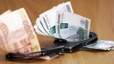 В Новосибирске ветврач фальсифицировала ветсертификаты