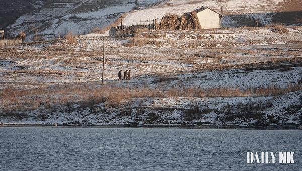 В Северной Корее приказано уничтожать птиц и кошек