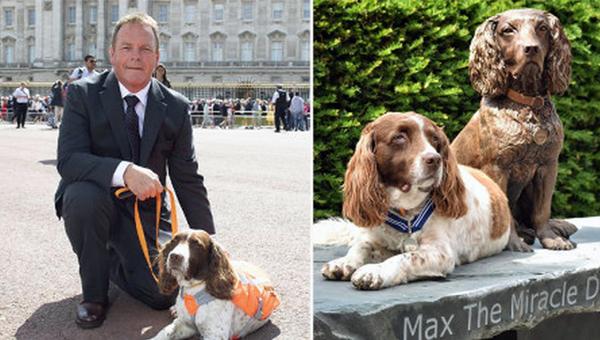 Спаниель Макс, британская собака-терапевт, увековечен в бронзе