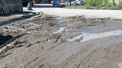 В Сочи клиенты не могут добраться до ветклиники из-за залитой грязью дороги