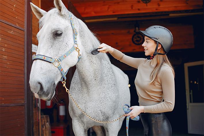шлем конный