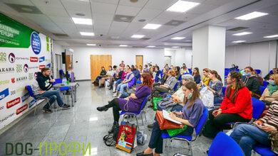 Определена программа конференции для заводчиков «DOG-ПРОФИ» на выставке «ПаркЗоо»