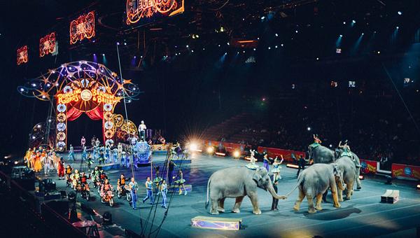 МСХ предлагает упростить получение лицензии для гастролирующих цирков