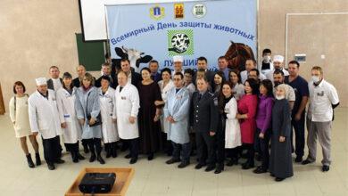 В Ульяновске выбрали «Лучшего ветеринарного лекаря»