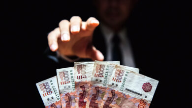 В Белгороде сотрудника ветслужбы обвинили в выдаче фиктивных ветсертификатов