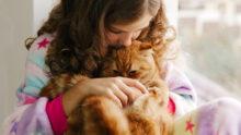 Учёные обнаружили, что флора здоровых кошек подавляет рост MRSP