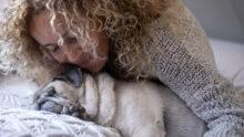 Профильный комитет Госдумы поддержал введение штрафов за жестокое обращение с животными