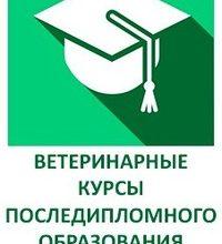 Школа Сотникова